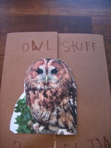 A HOOT of a Time – Owls Lapbook