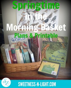 Springtime in the Morning Basket  – Plans and Printable